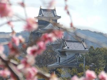 石山公園‗烏城up.JPG